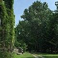 Pałac Tyszkiewiczów i fragment parku w Pogorzeli.jpg
