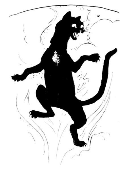 Witch Warrior Cat Is Your Best Freind