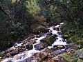 Paisagem do Parque Nacional da Peneda - Gerês 08.jpg
