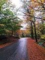 Paisagem do Parque Nacional da Peneda - Gerês 11.jpg