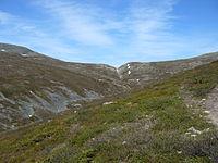 Pallas-Yllästunturin kansallispuisto.jpg