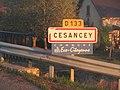 Panneau entrée Cesancey oct 2018 2.jpg