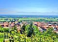 Panorama sur Soultz, depuis le vignoble du Hornstein. (1).jpg