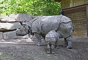 An Indian rhinoceros and baby at the Nürnberger Zoo.