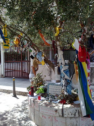 Paolo Borsellino - Memorial tree dedicated to Borsellino, in Palermo