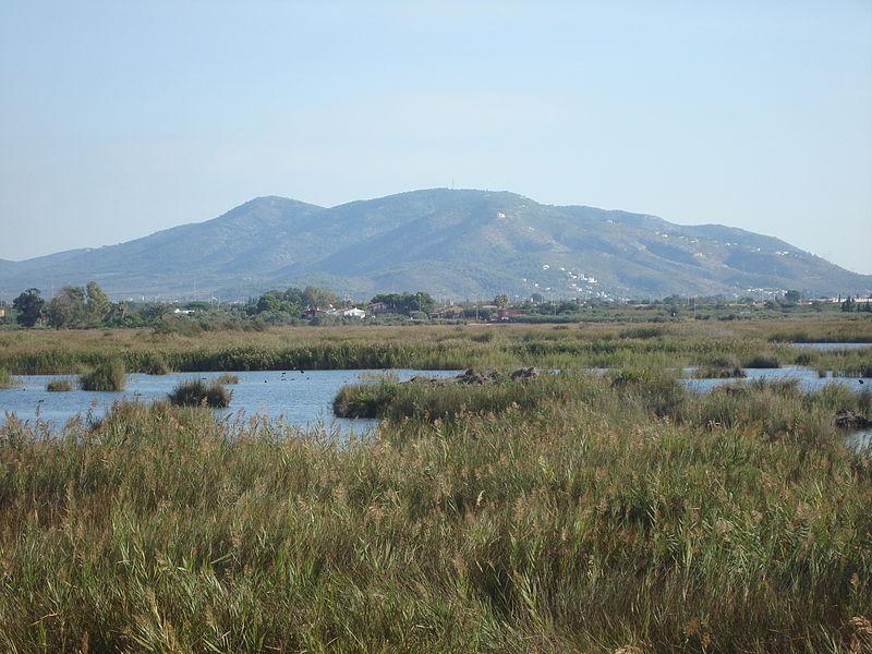 File:Paraje Natural del Prat de Cabanes-Torreblanca.JPG