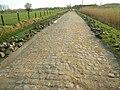 Paris-Roubaix Secteur pavé de Warlaing à Brillon.jpg