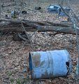 Parker Woodland blue trash 1.jpg