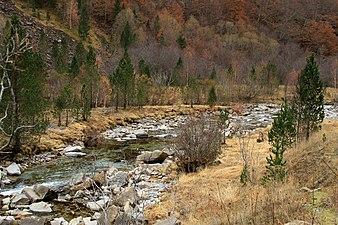Parque Nacional de Ordesa. Río Arazas en Soaso.jpg