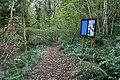 Path through Scadson Woods - geograph.org.uk - 1015723.jpg