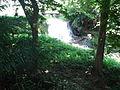 Penang Botanic Gardens (20).JPG