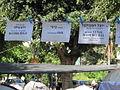 PikiWiki Israel 13891 housing price protest.JPG