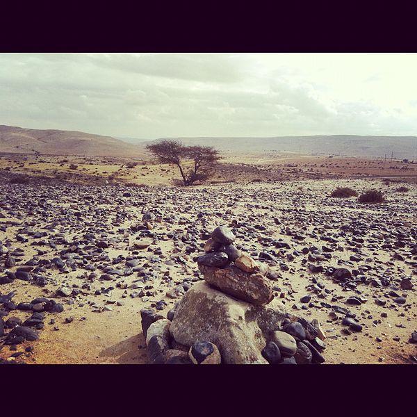 גוונים במדבר