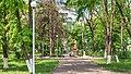 Pivdenne, Kharkiv Oblast, Ukraine - panoramio (1).jpg