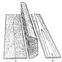 Sketch of A—Quarter-sawn & B—flat-sawn