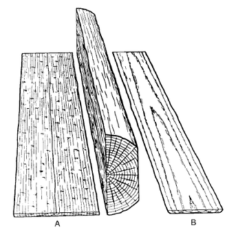 Wood grain - Image: Plain quarter sawn