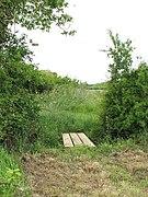 Plank bridge across ditch - geograph.org.uk - 1342526.jpg