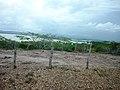 Pohled z vrcholu sopky El Totumo.jpg