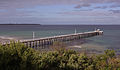Point Lonsdale jetty from lighthouse concourse.jpg