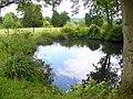 Pond, Hyes Farm - geograph.org.uk - 1363860.jpg