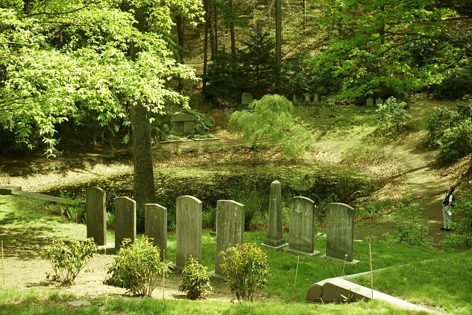 Pond in Mount Auburn Cemetery