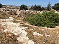 Pre-history in Mosta 23.jpg