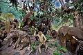 Primate Taxidermy, Rahmat International Wildlife Museum and Gallery.jpg