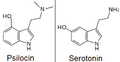Psilocin and serotonin.png