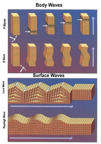 Geophysics - Illustration of the deformations of a block by body waves and surface waves (see seismic wave).