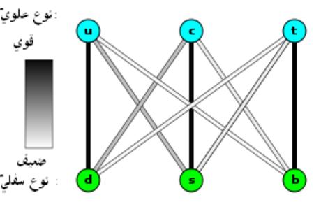 """الكرات الثلاث العلوية """"u"""" ،""""c""""، و""""t"""" ترمز إلى """"مجموعة الكواركات العلوية"""" بينما توجد ثلاث كرات بالأسفل """"d"""" ،""""s"""" ،""""b"""" وترمز إلى """"مجموعة الكواركات السفلية"""". ويلاحظ أن الكرات """"u"""" ،""""c""""، و""""t"""" تحاذي عموديا مع الكرات""""d"""" """"s""""، و""""b"""" بالتسلسل. الخطوط الملونة تربط الكواركات العلوية بالسفلية، وتشير عتامة اللون إلى قوة القوة النووية الضعيفة مابين الإثنين؛ الخطوط مابين """"d"""" إلى """"u"""" ،""""c"""" إلى """"s""""، و""""t"""" إلى """"b"""" هي معتمة؛ الخطوط مابين """"c"""" إلى """"d"""" و""""s"""" إلى """"u"""" هي رمادية؛ والخطوط مابين """"b"""" إلى """"u"""" ،""""b"""" إلى """"c"""" ،""""t"""" إلى """"d""""، و""""t"""" إلى """"s"""" هي بالأغلب بيضاء."""