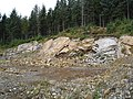 Quarry in the forestry - geograph.org.uk - 57883.jpg