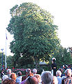 Queen's Official Birthday reception Government House Jersey 2010 03.jpg