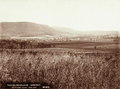 Queensland State Archives 5181 Cultivated Lands Emu Vale1899.png