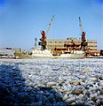 Rand 2 (külmutuslaev). Paljassaare sadam 81.jpg