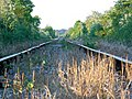 Rarely used railway line - geograph.org.uk - 422506.jpg