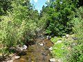 Rayado Creek, New Mexico.jpg