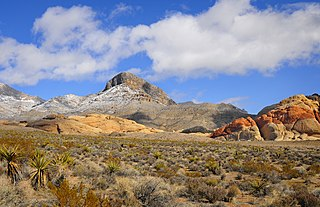 View of Turtlehead Peak and Calico Hills in the Red Rock Canyon National Conservation Area