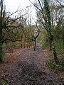 Redhill Common - geograph.org.uk - 106914.jpg