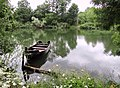 RekaVeleka.jpg