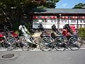 Rickshaws (3113451710).jpg