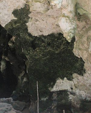 Religion in the Philippines - Example of what Maise believes to be a cave painting depicting Manjusri, in Tabon Caves in Palawan.