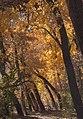 Rio Grande Valley State Park (24473409478).jpg