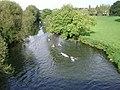River Avon, Warwick - geograph.org.uk - 1194442.jpg