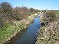 River Skerne - geograph.org.uk - 389856.jpg