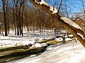 Rock Creek - Flickr - treegrow (4).jpg