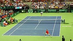 Roddick v Ferrer 2011.jpg