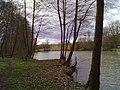 Rohrbachtalweiher - geo.hlipp.de - 34348.jpg