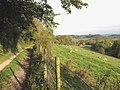 Rolling Herefordshire countryside - geograph.org.uk - 1192575.jpg