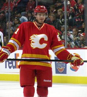 Roman Horák (ice hockey, born 1991) Czech ice hockey player
