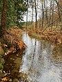 Royal River source.jpg